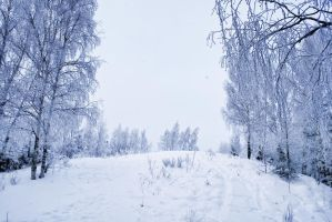Winter1 by Lubov2001