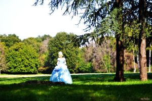 Lovely Princess Cinderella by FrancescaMisa
