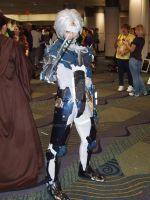Raiden by eburel506