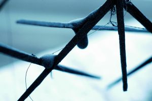 Barbed Wire by denimandfrills