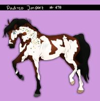 Padro Import #470 - Claimed by Boggeyboo