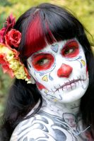 Sugar Skull 5 by DerekTall