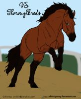 VS Thoroughbreds by XtremeMystery