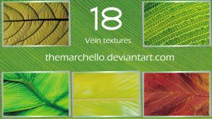 18 Vein textures by TheMarchello