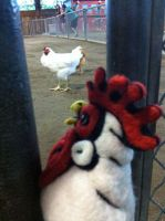 Felted Chicken Head at the Fair by AlwaysSuagarCoated
