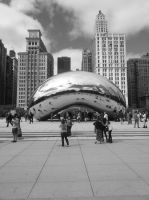 the bean... by simpspin