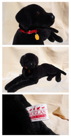 Douglas Cuddle Toys - Max Black Labrador by The-Toy-Chest