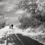 Frozen road by Floriandra