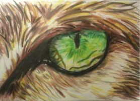 Quick Sketch - Cat Eye by JonnoGerritsen