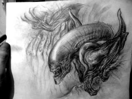Alien boceto by andralien