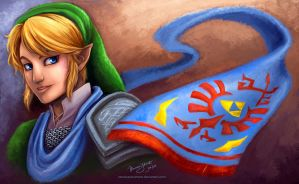 Hyrule Warriors by vanessayotumoto