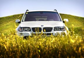BMW X3 by Tagirov