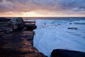 Nature's Canvas by FireflyPhotosAust