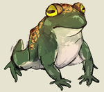 Frog by painted-flamingo