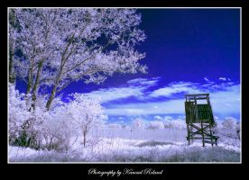 IR view by zozzy1980