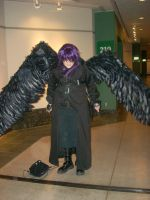 Dark with wings closed by Im-ur-misconception