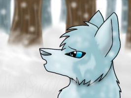 .::Snow Air::. by KylieKattu