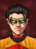 Robin Portrait by damzo