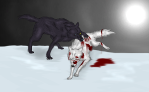 Darcia And Kiba by PyroRacoon