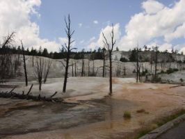 Mammoth Hot Springs Wyoming by Embers-Dragon47