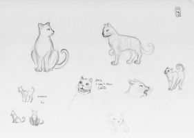 Sketch-a-Day 04-06-13: Cats by ThroughMyThoughts