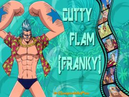 Montage of Franky (alias Cutty Flam) by GueparddeFeu