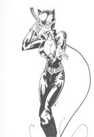 Catwoman by Chaosbandit