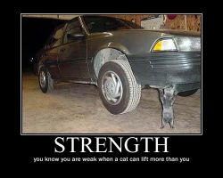 Strongcat demotivational by Val30fDr3am5