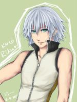 KH: Riku3DS by yoruven