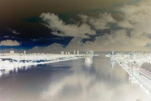 Negative, Miami cruise docks by vbcsgtscud