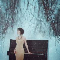 Winter Symphony by AnitaAnti