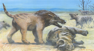 Andrewsarchus re-do by tuomaskoivurinne