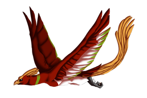 Susiron's Ho-Oh by Susiron