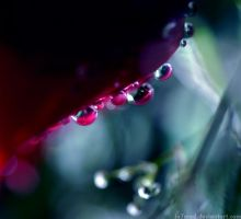 .::Silent.Tears::. by iA7mad
