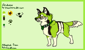 Andrew reference sheet by Shamboro