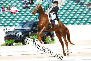 Katie Ruppel Dressage III by zeeplease