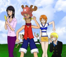 The Straw Hat Pirates by Wakamoley