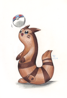 Furret Ball by Phoelion