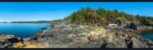By Heath Islet by Lasqueti-Ronnie