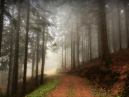 Shrouded Way by Weissglut