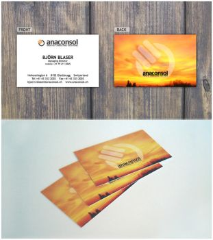 anaconsol - Business Cards by dotsilver