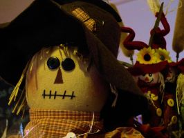 Unhappy Scarecrow by MFDonovan