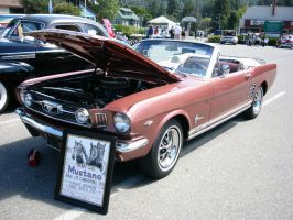 1966 Mustang GT - More American Than Apple Pie by RoadTripDog