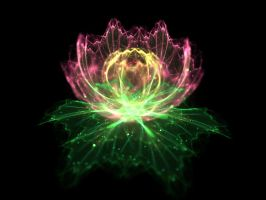 fractal lotus by fengda2870
