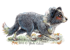 Chibi-Dogs. Border Collie by Zhiibe