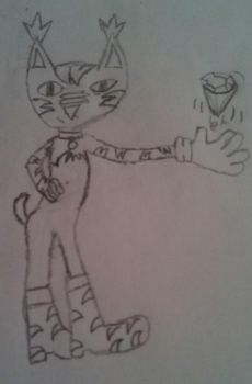 Sonic oc- Emerald the lynx READ DESCRPITION by I-love-sonadow