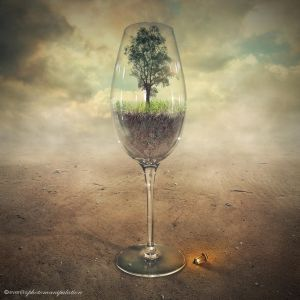 glass of tree by evenliu