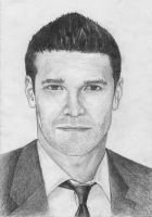 Bones - Seeley Booth by Filip24