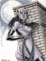 Catwoman Commission 01 by John-Stinsman