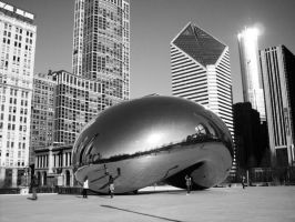 The Bean by fille-d-amoureux